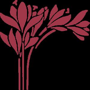 icona rossozafferano